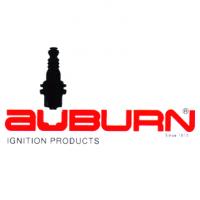 Auburn I-31 Ignitor