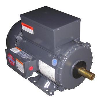 Nidec-US Motors (Emerson) FD13CM2P Motor 1/3HP 115/230V 1725RPM