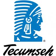 Tecumseh Compressor 810S186B39 Motor 460V 1/4Hp 1550/1350 RPM Clockwise